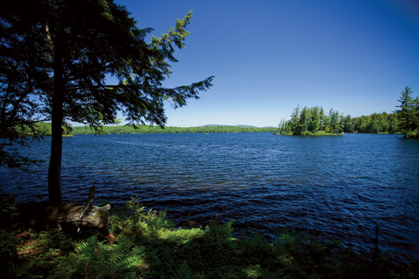Adirondack Waterfront Home